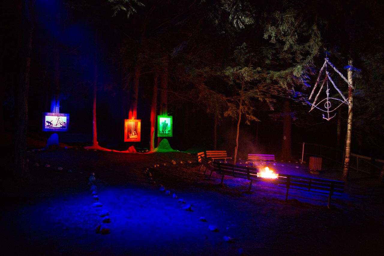 06-foresta-lumina