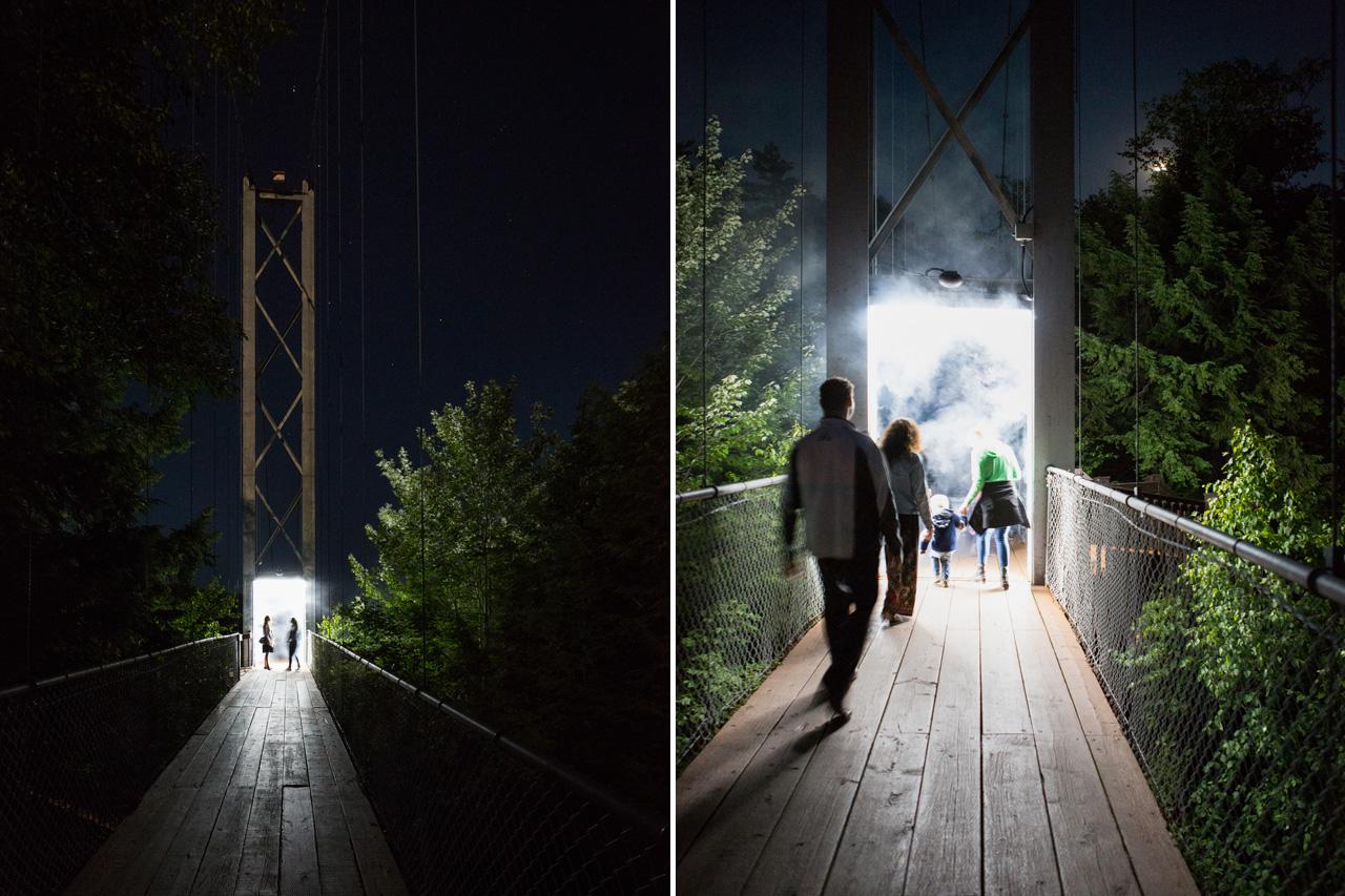 09-foresta-lumina