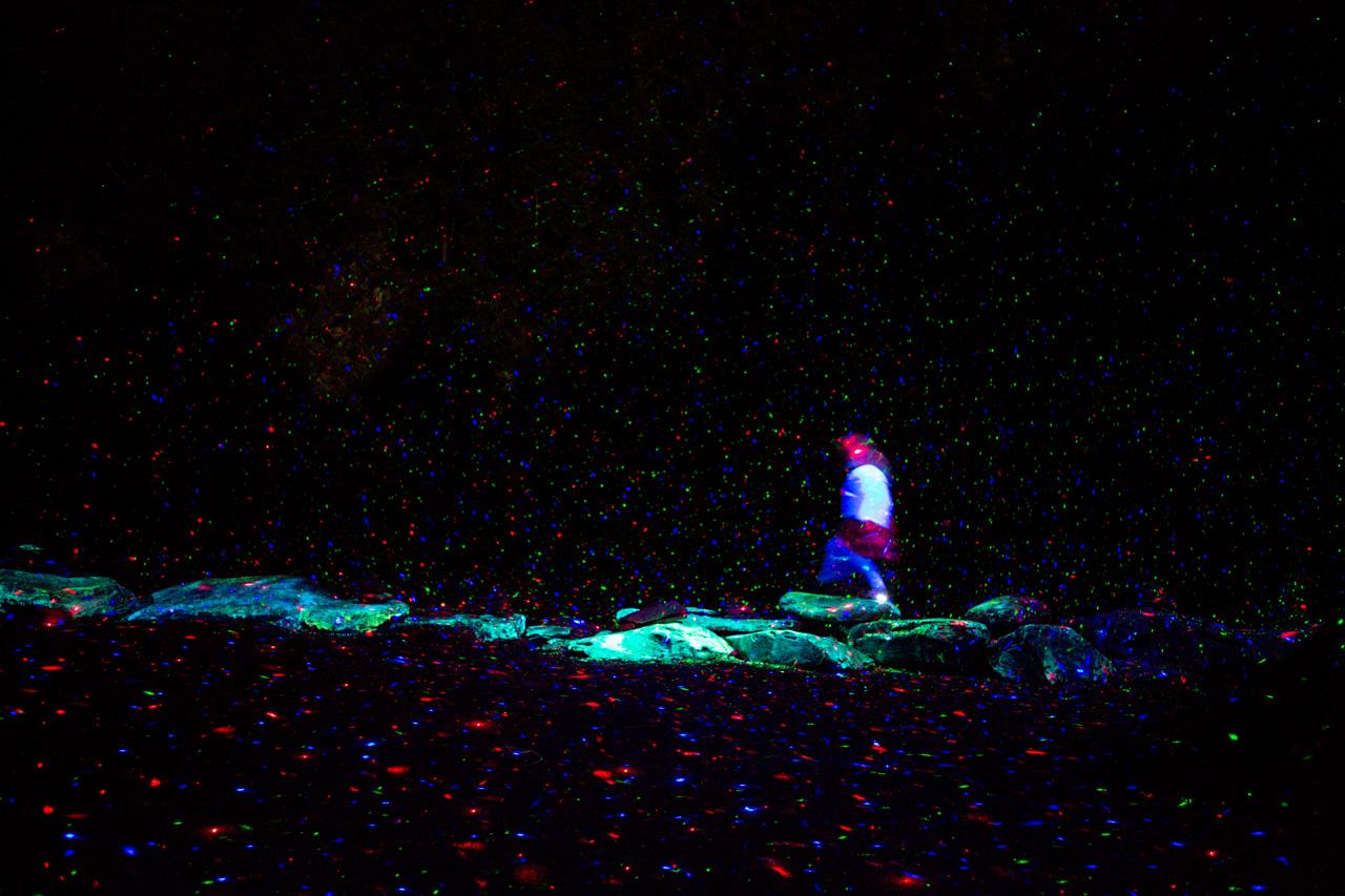 12-foresta-lumina