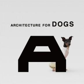 """缘于爱的设计②: 原研哉 :""""设计,为了爱犬 """""""
