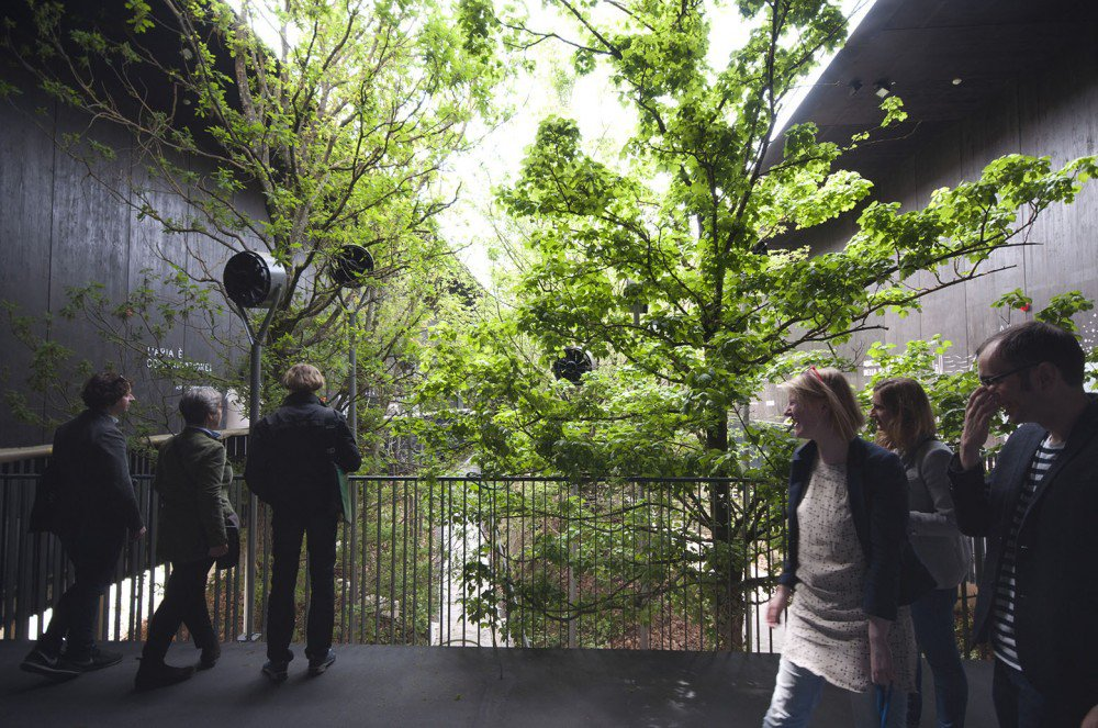 breathe,austria-pavilion-expo2015-hisheji (19)