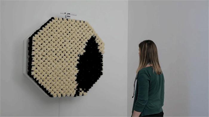 pom pom-mirror-hisheji (1)