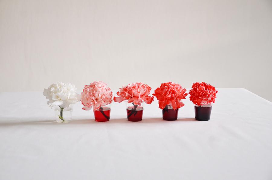 Red-Aung San Suu Kyi-flowers-hisheji (7)