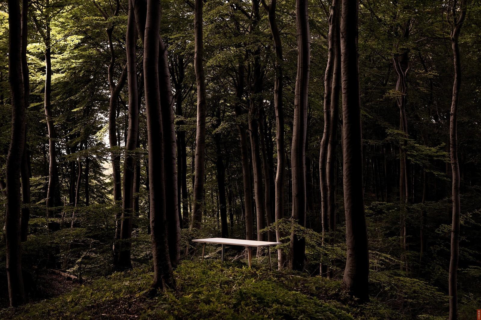 Timber-table-hisheji (7)