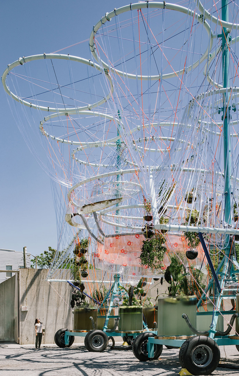 cosmo-installation-hisheji (4)