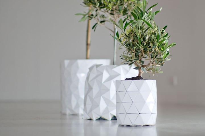 growth-planter-hisheji (2)
