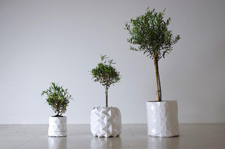 growth-planter-hisheji (3)