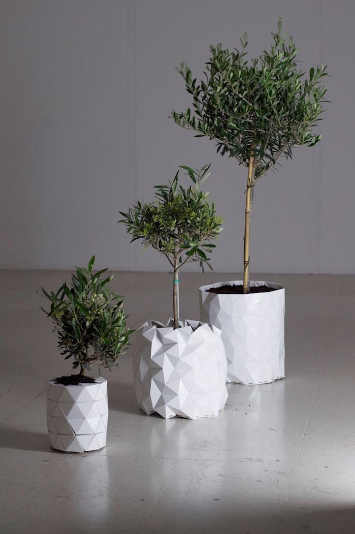growth-planter-hisheji (4)