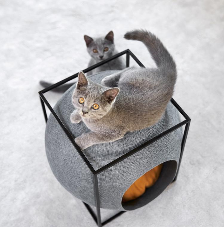 meyou-cat-cocoon-hisheji (1)