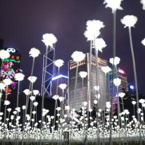 """25000朵LED白玫瑰 造出香港""""最浪漫""""情人節"""