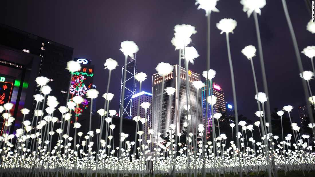 160215101840-04-hong-kong-light-rose-garden-0213-super-169