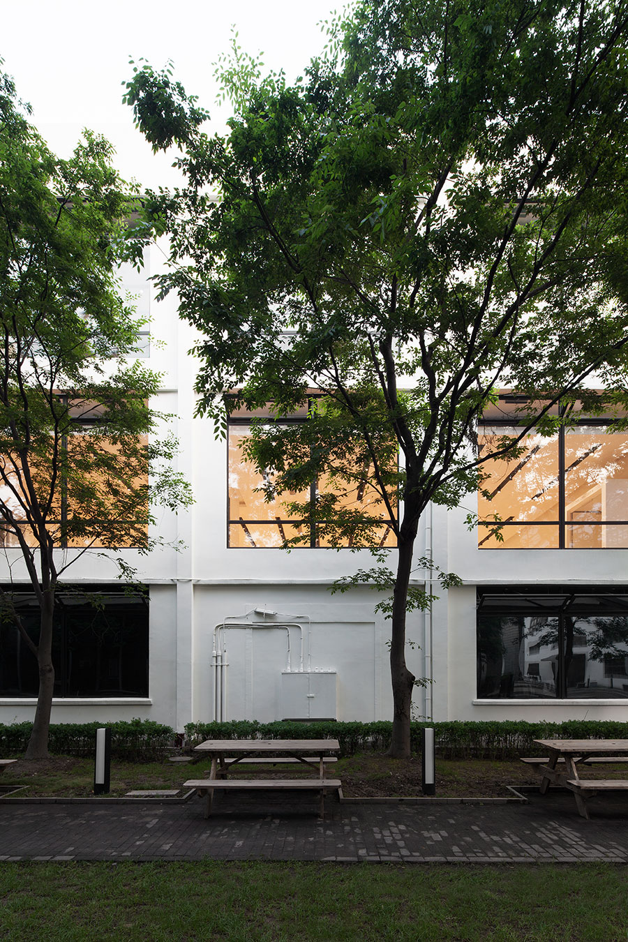 DW-Building-01