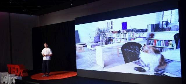 青山周平最新TED×Beijing演讲:我最羡慕的是我家的猫