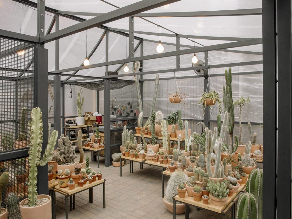 04-New-York-Greenhouse-By-Part-Office-Cactus-Store--960x720