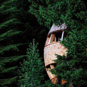 理想变现实,在这个蛋形树屋你可以看到阿尔卑斯山