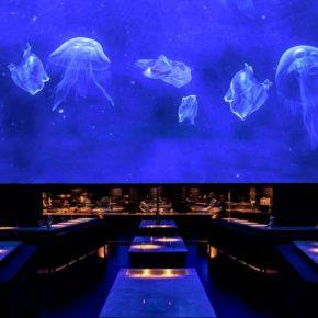 """空间遇上数字影像,开一家""""水下餐厅""""竟然这么容易!"""