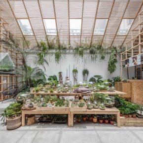 """越南这家原木风咖啡店,在市中心造了一个""""热带雨林"""""""
